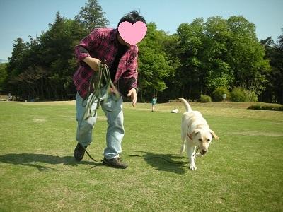 人と一緒に走る犬