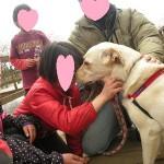 知らない人に許可なく愛犬を触られるのは有り?無し?