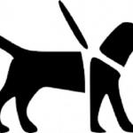 盲導犬チャリティーカレンダー「message」2019