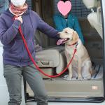 本日12/13 BSジャパン「ポチたまペット大集合!」放送のお知らせ