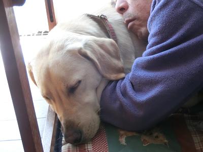 仲良く眠る犬と飼い主