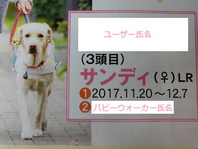 盲導犬サンディ号