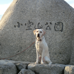 犬連れ冬の伊豆 小室山公園