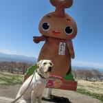 犬連れ佐久平ハイウェイオアシス「パラダ」