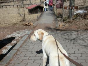 遊歩道散策