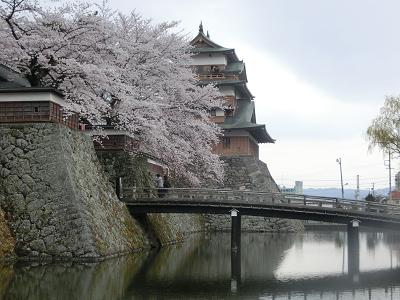 桜と高島城天守閣