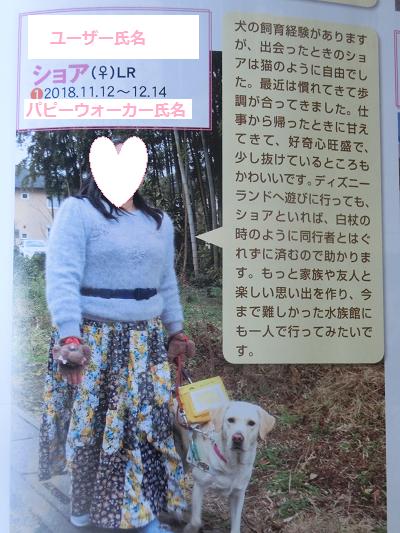 盲導犬ショア号
