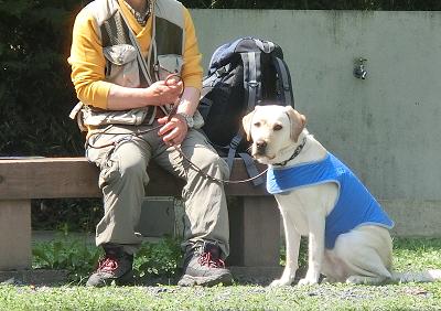 休憩する犬と飼い主