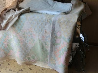 毛布で覆われたケージ