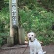 滝山公園標識と犬