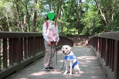 橋の上に立つ犬と飼い主