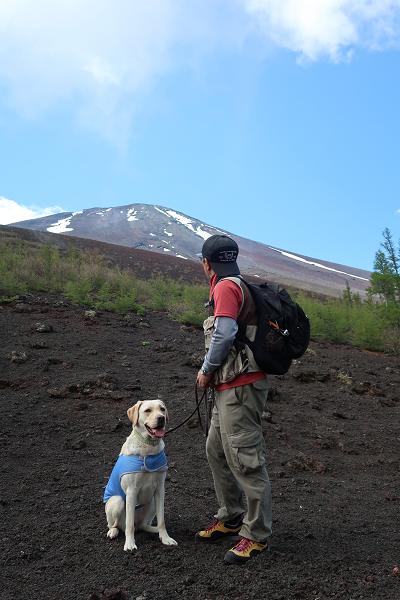ハイキングコースから見える富士山頂