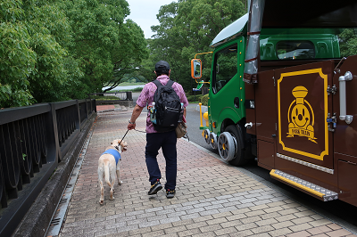 パークトレインに抜かれる犬連れの人