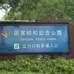 初夏を楽しむ犬連れ昭和記念公園