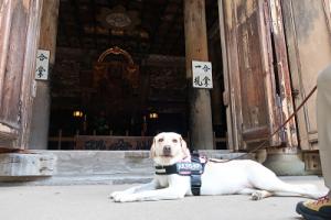 本尊地蔵菩薩坐像