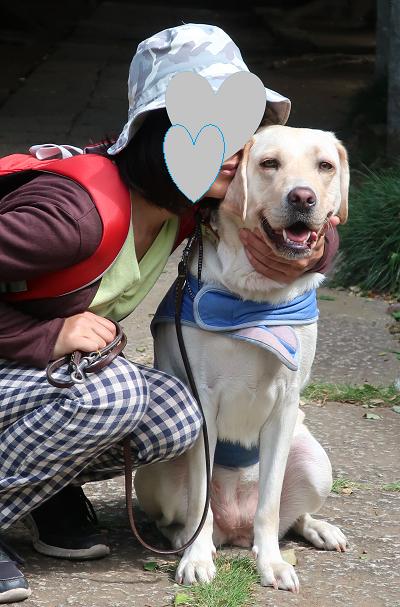 座る犬と人