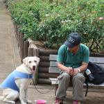 犬連れ与野七福神めぐり