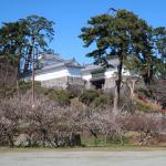 犬連れ小田原城址公園・報徳二宮神社