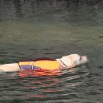 犬連れ夏の巾着田|高麗川でBBQや川遊びを楽しもう