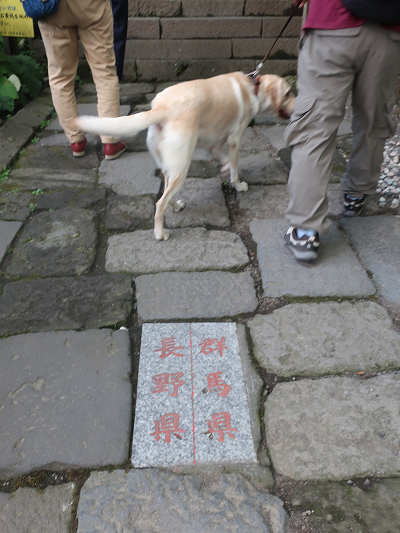 神社内県境のっ標識