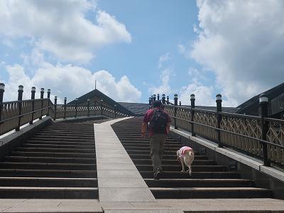 階段を昇る