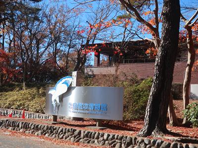 埼玉県自然の博物館