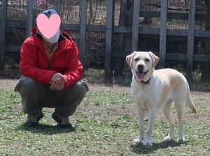 飼主と並ぶ犬