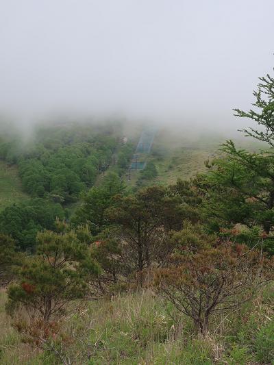 霧がかかる山
