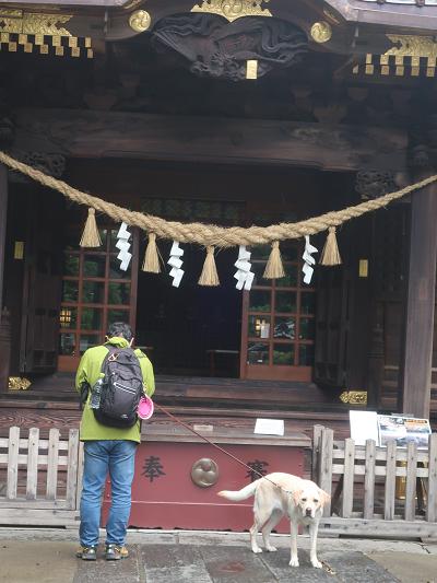 玉敷神社にお参り